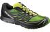 Salomon M's Sense Mantra 3 Shoes Fern Green/Black/Gecko Green